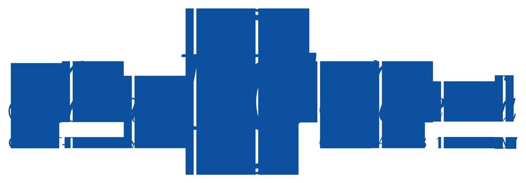 logo-nevskaya-kosmetika